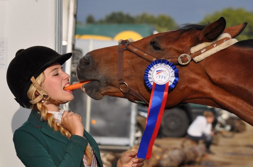 Person and horse eating the same carrot